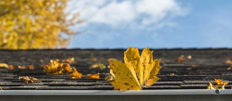 5 Tips for Your Home Roof Maintenance